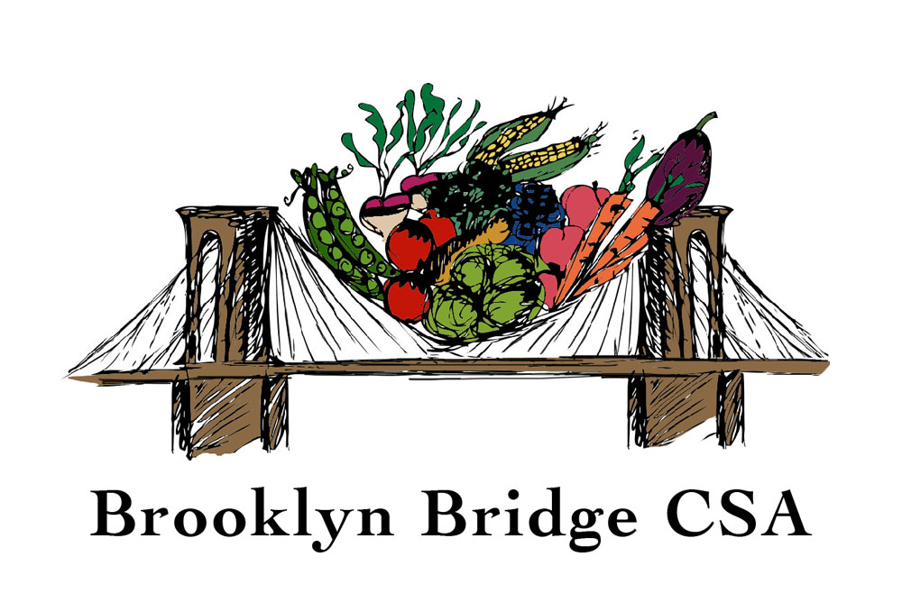 Brooklyn Bridge CSA